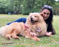 Animais de apoio são suporte emocional e ajudam na depressão