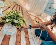 Escolas usam tecnologia e inovação para alunos solucionarem problemas ambientais e sociais